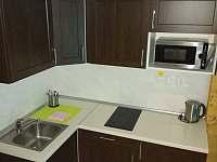 Kuchyňská linka v čtyřlůžkovém pokoji - Jistec