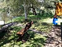 prostor před chatu / vstup do řeky / loďka /  Chata Čejnov u Lužnice