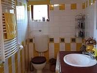 Koupelna s toaletou v přízemí