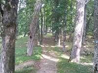 Chata Lipno - chata - 21 Horní Planá
