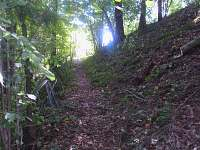 Přístupová cesta k řece - chata k pronájmu Neznašov