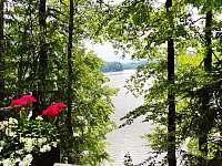 Chata k pronajmutí - dovolená  Velký Klikovský rybník rekreace Malý Ratmírov