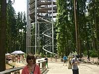 Stezka korunami stromů od nás 2km - Lipno nad Vltavou