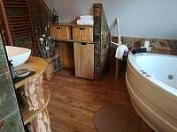 Apartmán Life in Nature - apartmán k pronájmu - 22 Jaronice