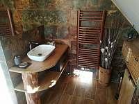 koupelna - apartmán k pronájmu Jaronice