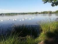 Vrbenské rybníky - Jaronice