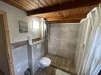 druhá koupelna v přízemí - Lipno nad Vltavou - Slupečná