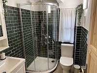 první koupelna v přízemí - Lipno nad Vltavou - Slupečná