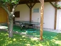 Zahrada - stolní tenis