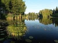 rybník na chytání ryb
