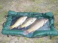Rybaření - Strání