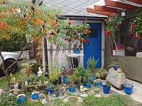 Květinový koutek před pergolou - Jevišovice