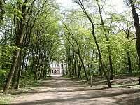 Park u nového zámku v Jevišovicích -