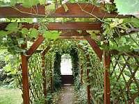 Ubytování u Antlů v Jevišovicích- hlavní vchod od branky - apartmán k pronájmu