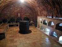 Vinný sklep s ubytováním - pronájem chaty - 18 Uherčice u Hustopečí