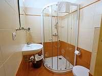 Pension U Obecní Šatlavy - ubytování Bavory - 4