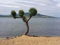 Chata u jezera na Pálavě - chata k pronajmutí - 11 Šakvice