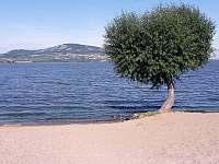 Chata u jezera na Pálavě - chata - 49 Šakvice