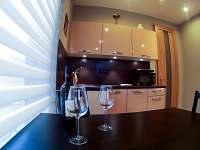Velký apartmán - kuchyňská linka