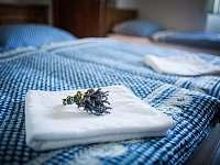 Chalupa U Ježka - chalupa ubytování Morkůvky - 9