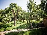 Zahrada - Morkůvky