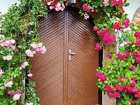 Vchod do sklípku v létě - chata k pronájmu Kostelec u Kyjova