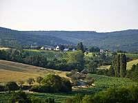 Výhled ze sklípku na vinohrady a Chřiby - chata k pronájmu Kostelec u Kyjova