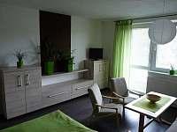 Luhačovice - Podhradí - apartmán k pronajmutí - 5