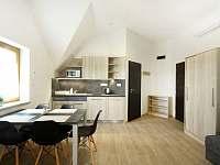 Apartmán č. 2, kuchyňka - Kozojídky