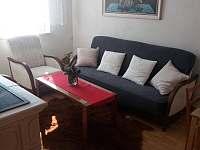 obývací pokoj - chata k pronájmu Halenkovice