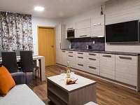Apartmán 3+kk - přízemí