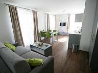 Lednice na Moravě - apartmán k pronájmu - 20