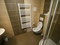 Lednice na Moravě - apartmán k pronájmu - 22
