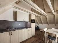 Lednice na Moravě - apartmán k pronájmu - 47