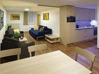 Suterén - apartmán k pronájmu Lednice na Moravě