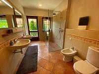Koupelna s walk-in sprchovým koutem - apartmán k pronájmu Pavlov