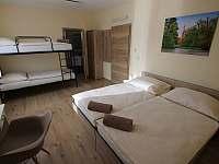 Čtyřlůžkový pokoj s patrovou postelí - chalupa k pronájmu Mikulov - Mušlov