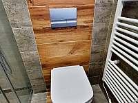 Koupelna - pronájem chalupy Mikulov - Mušlov
