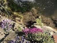 Potok u chalupy - Lopeník
