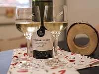 Domácí pohoda u vínečka - apartmán k pronajmutí Prušánky - Nechory