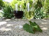 víno z vlastní produkce - Těšetice u Znojma