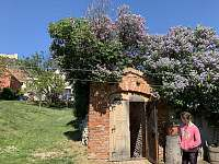 Prázdninový dům Mandorle - chalupa - 19 Pavlov