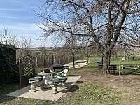 Posezení v zahradě - chalupa k pronájmu Bořetice