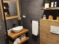 Koupelna - chalupa k pronájmu Drnholec