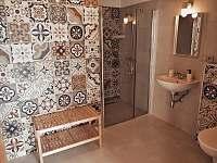 Apartmán 1 - koupelna v přízemí - k pronajmutí Nový Přerov