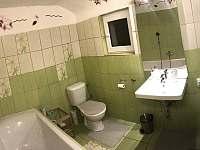 Ubytování v soukromí - pronájem chalupy - 25 Dobré Pole