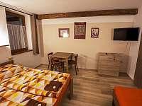 Pokoj č.4 - Svatobořice - Mistřín