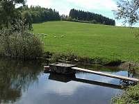 Rybník i pro otužilce je sto metrů od pozemku - Valašské Klobouky