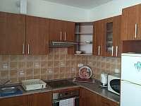 kuchyně - pronájem apartmánu Mikulov na Moravě