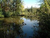 Přírodní rezervace Plačkův les a říčka Šatava - pronájem apartmánu Vranovice